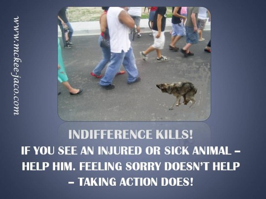 Indifference kills