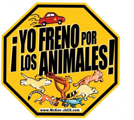 I brake for the animals!
