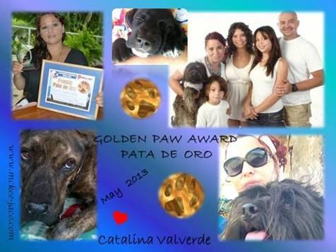 Premio Pata de Oro 2013 2