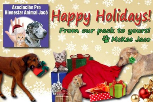 Happy Holidays / Felices Fiestas