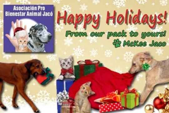 Happy Holidays / Felices Fiestas