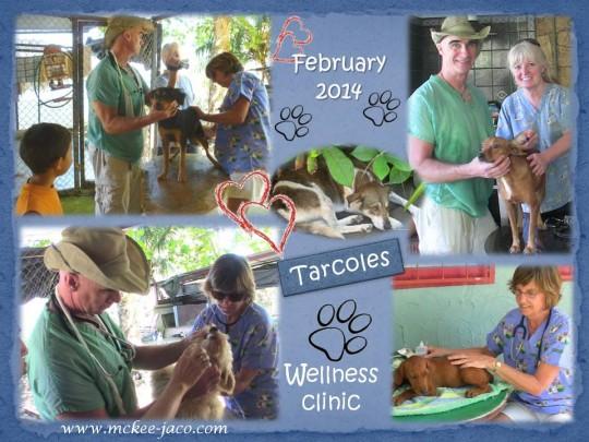 Tarcoles 02-14