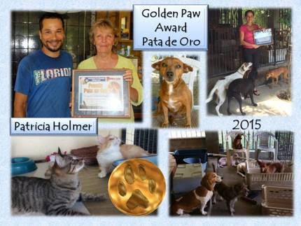 golden-paw-2015