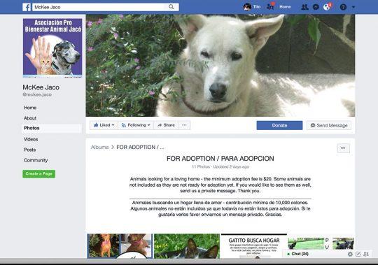 Mckee-Jaco Facebook Adoptions
